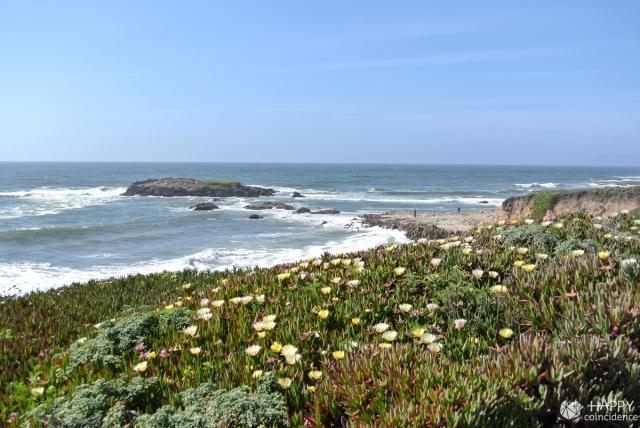 HC-SF-coast3