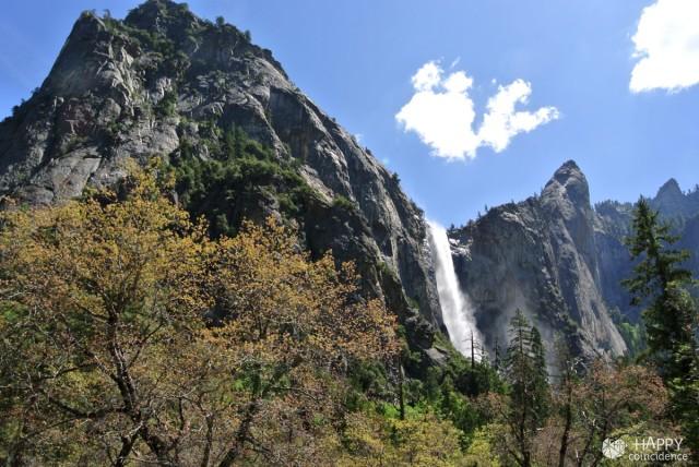 HC-SF-Yosemite-park